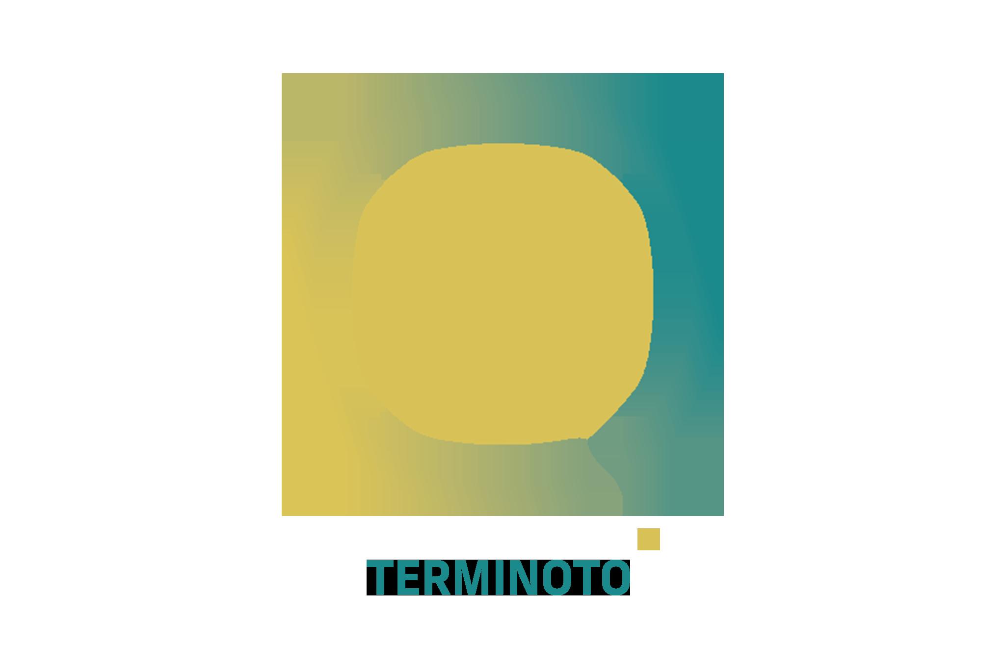 https://immotooler.com/wp-content/uploads/2017/11/TERMINOTO-ICON.png